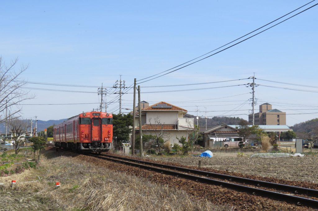 IMG_0231